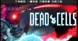 《死亡细胞》绿色中文版下载 集成巨人崛起.坏种.等全DLC 修改器+高级存档