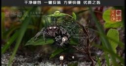 《蚂蚁文托》整合Goals升级档版 AntVentor 绿色中文版下载