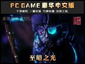 《至暗之光》v1.2 绿色中文版下载 Dark Light