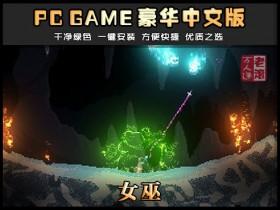《女巫》Build 20201201 绿色中文版下载 Noita 像素经典游戏